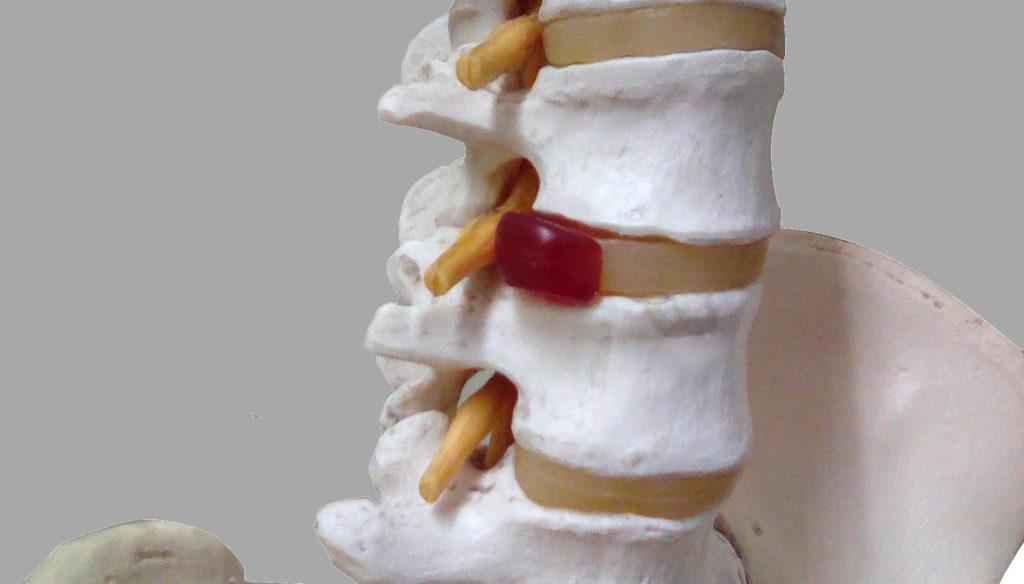 骨端線が閉じてから身長を伸ばす方法